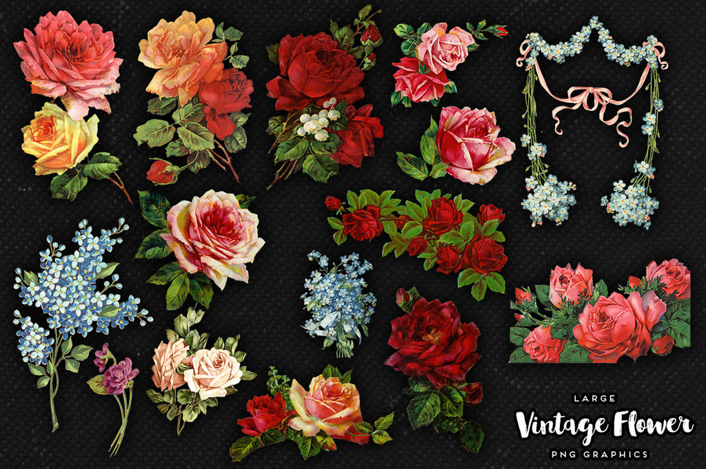 Large Vintage Flower Graphics No. 4