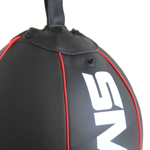 Floor to Ceiling Speed Bag