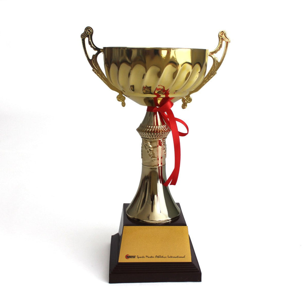 Trophy Cup Small, trophy, martial arts trophy, trophy martial arts, trophy martial art