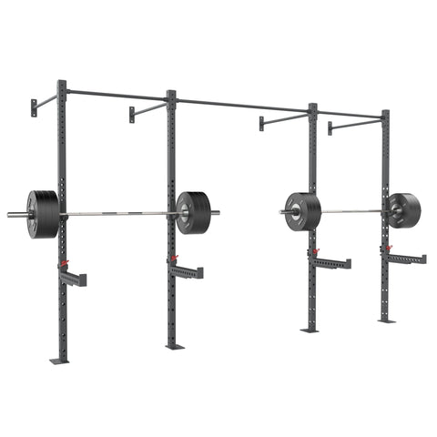 Wall Mounted Rig - 2 Squats Cells
