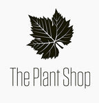 The plant shop is a plant nursery based in Chennai India dealing with the online sales of plants