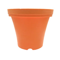 planters for growing Tulsi, Basil and other herbs