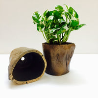 Log planter without plant (random colour)