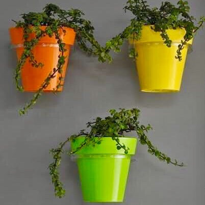 Wall Mountable Planters