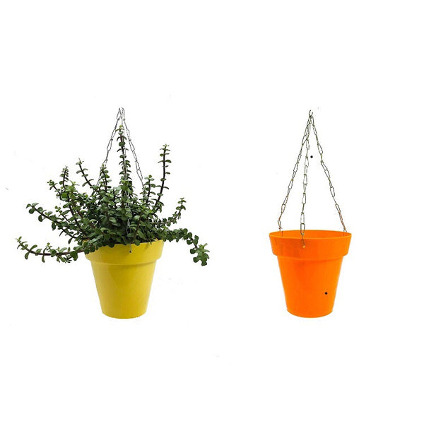 Hanging planters set of 5(coloured)