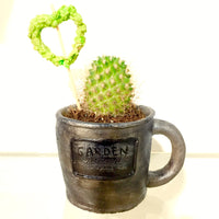 Coffee mug planter