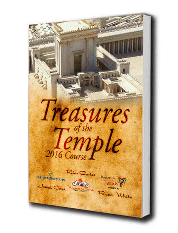 Treasures of the Temple Extra Workbook