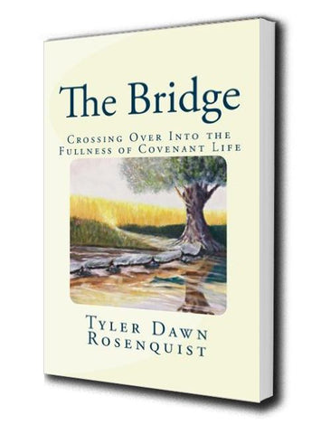 Books - The Bridge