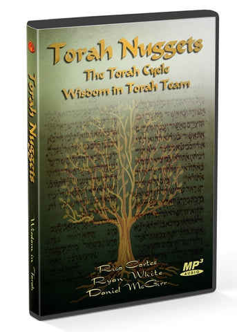 Teaching - Torah Nuggets