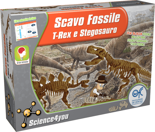 Scavo Fossile: T-Rex e Stegosauro, [Science4you_Italia]