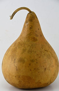 Gourd Decorations, Plain gourd, perfect for crafting, make your own birdhouse, Kids Crafts, Natural Crafts, Mother Nature Crafts - Gourdaments