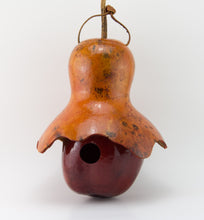 Load image into Gallery viewer, Apple with Hat Gourd Birdhouse, Cottage Birdhouse - Gourdaments