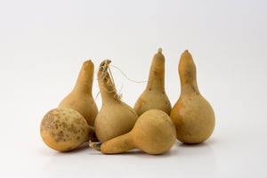 Mini Dipper Gourds for your Craft Project, Box of 15 - Gourdaments