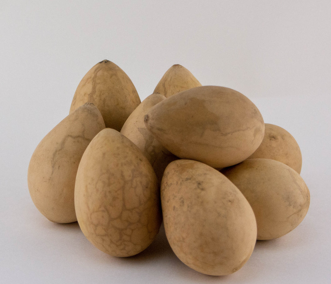 Dried Egg Gourds for Crafting -Box of 50 - Gourdaments
