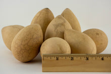 Load image into Gallery viewer, Dried Egg Gourds for Crafting -Box of 50 - Gourdaments