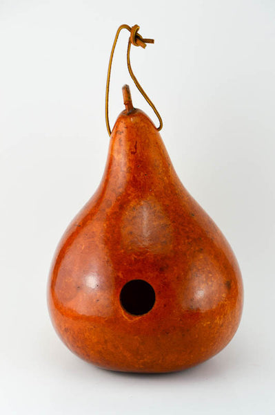 Gourd Birdhouses Painted Gourd Art Garden Art Bird Lovers Gift or Mothers Day Gift- Tan - Gourdaments