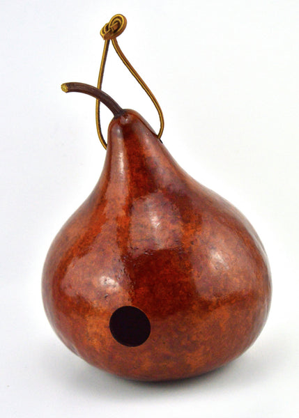 Gourd Birdhouse, Natural Decor, , unique gifts, nature lover gift, bird watcher, outdoor décor, grandparent gift, - Gourdaments
