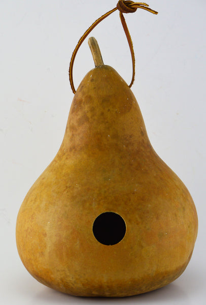 Gourd Birdhouse, Unfinished, Create Your Own Birdhouse, Childrens Crafts, Arts and Crafts, Outdoor crafts, Rustic Décor, Country Life, Bird Lovers, Kids Project - Gourdaments