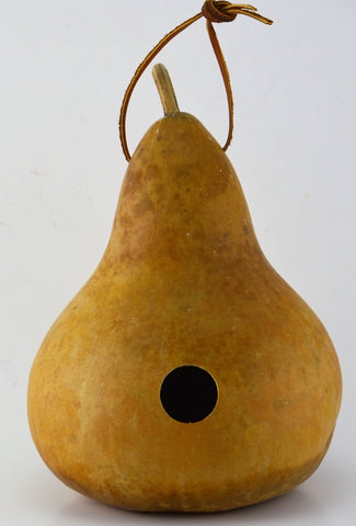 Gourd Birdhouse, Unfinished, Create Your Own Birdhouse, Childrens Crafts, Arts and Crafts, Outdoor crafts, Rustic Du00e9cor, Country Life, Bird Lovers, Kids Project