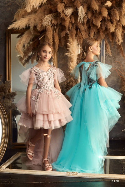 2320 Rosalina Flower Girl Long Sleeve Princess Ball Gown with Feather Accents