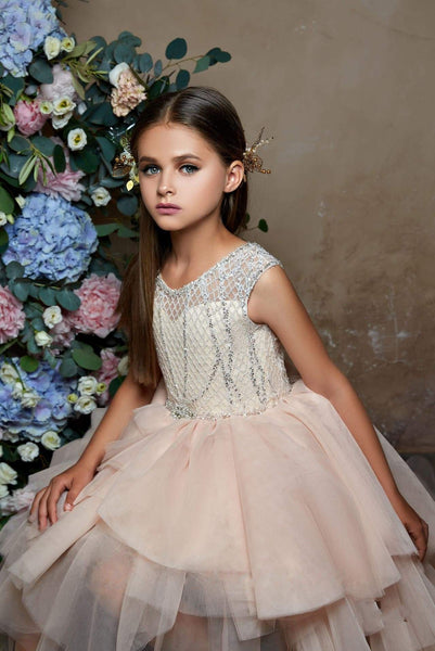 Little Girls Luxury Sleeveless Tiered Ruffled Tulle High Low Dress