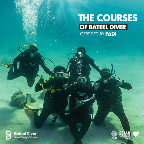 Bateel Development courses certified by PADI