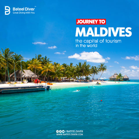 Journey to the Maldives