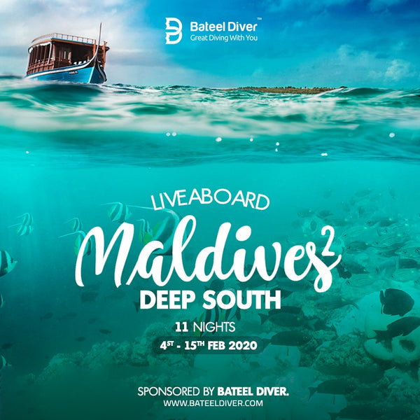 Maldives Liveaboard Feb 4-15 2020