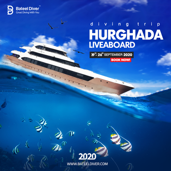 Hurghada Liveaboard September 19-26 2020