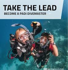 Divemaster e-Learning Course