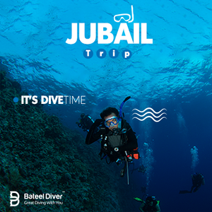 Jubail Diving Trip 19-08