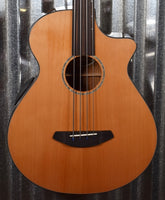 Breedlove Solo Jumbo CE Acoustic Electric Fretless Bass #3470