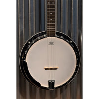 Washburn Guitars B11K 5 String Banjo with Brass Tone Ring & Case #0253