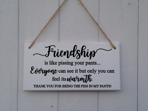 Best Friend Gift • Funny Sign • Friendship Gift Ideas • Bff Gift • Plaque Rude Bestie Sign • Bestie Gift • Best Friend Sign