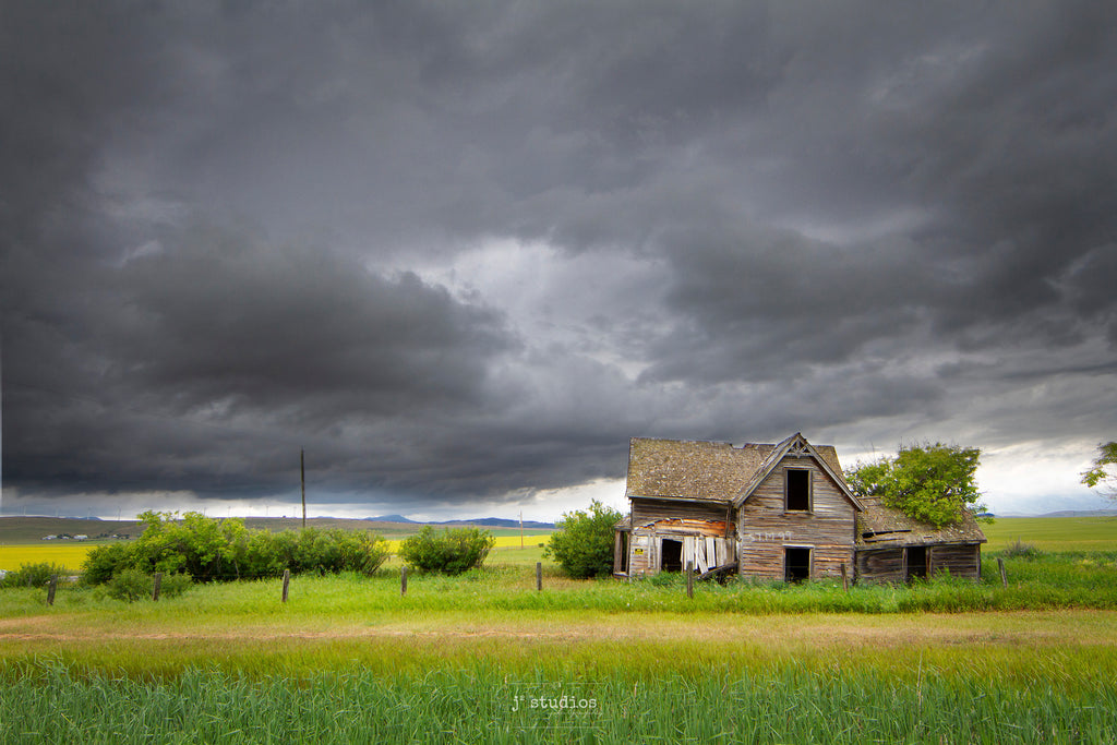 Beautiful Abandoned House standing steadfast against incoming storm. Canola fields. Mountains. Classic Alberta.