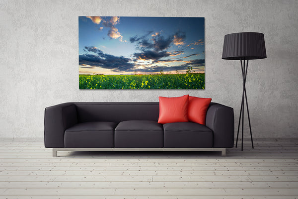 Big canvas on display above a couch in a modern living room. Home decor by photographer Larry Jang.
