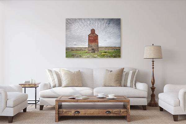 Modern Rustic Living Room ideas. Art print of grain elevator in Alberta badlands.
