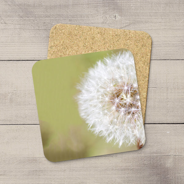 Intimate macro picture of dandelion flowers hand printed on beverage coasters by Larry Jang