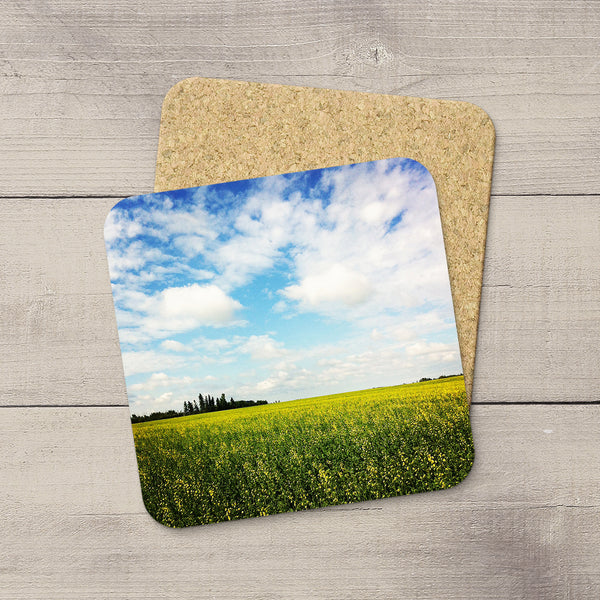 Photo coasters featuring a canola field in southern Alberta by Christina Jang.