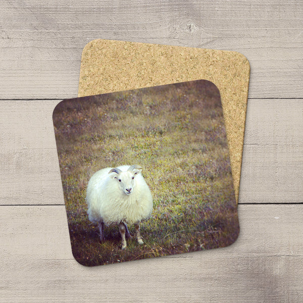 Coaster featuring a cute Sheep from Iceland by Christina Jang.