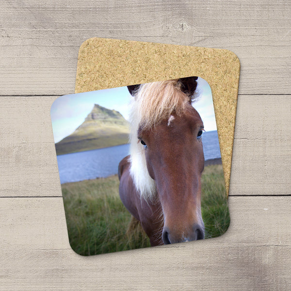 Coaster of an Icelandic horse looking into the camera by Christina Jang