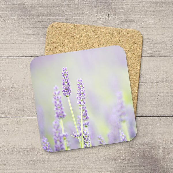 Image of stalks of lavender flowers blooming in a sea of purple. Printed on Cork Coasters by Edmonton photographer Larry Jang