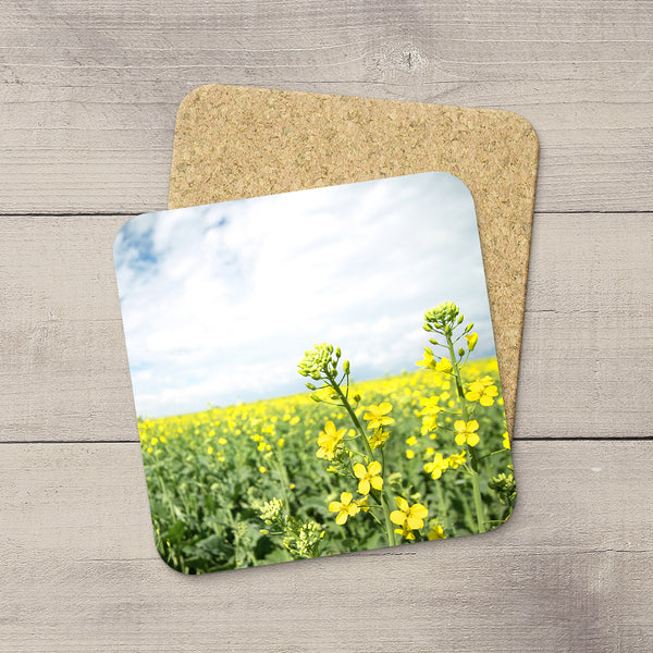 Drink Coasters featuring Canola flowers in Canadian Prairies by Edmonton based photographer, Larry Jang.