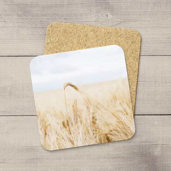 Drink Coasters featuring a barley spikes & awns by Alberta based photographer, Larry Jang.