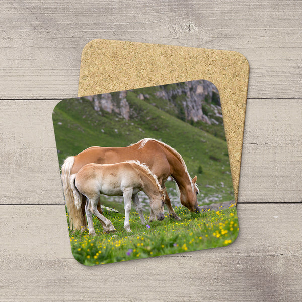 Coaster with a picture of a Family of wild horses in Dolomites mountains of Italy by Christina Jang