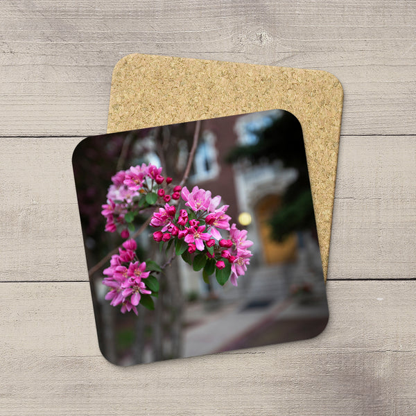 Pink blossoms on a tree in Oliver, a neighbourhood in Edmonton. Hand printed onto drink coasters by Edmonton photographer Larry Jang.