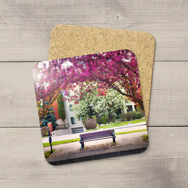 Picture of a park bench under pink blooming trees in the Edmonton River Valley . Hand printed on drink coasters by Edmonton photographer Larry Jang.