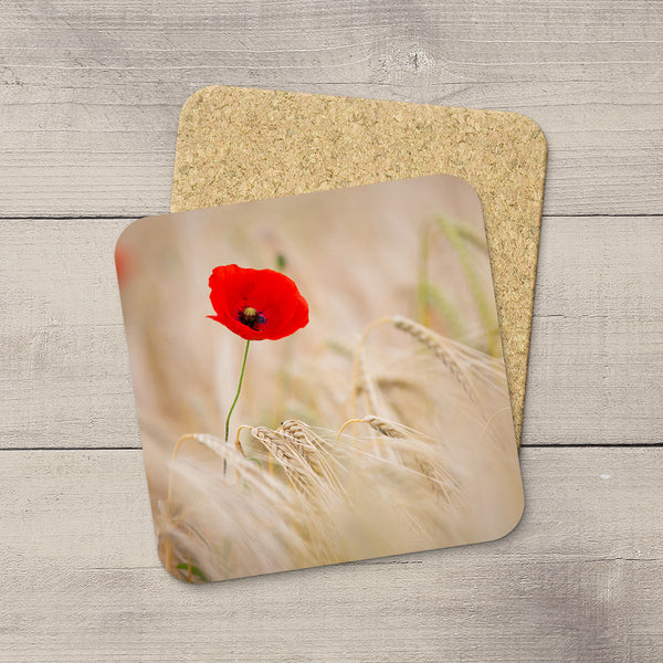 Photograph of Red Poppy blooming in a barley field. Printed on a photo coaster by Edmonton photographer Larry Jang.