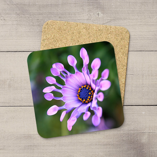Pink flowers on photo coasters by Edmonton photographer Larry Jang.