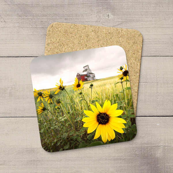 Picture of a sunflower with Raley grain elevator in background. Home accessories by Edmonton based photographer & artist, Larry Jang